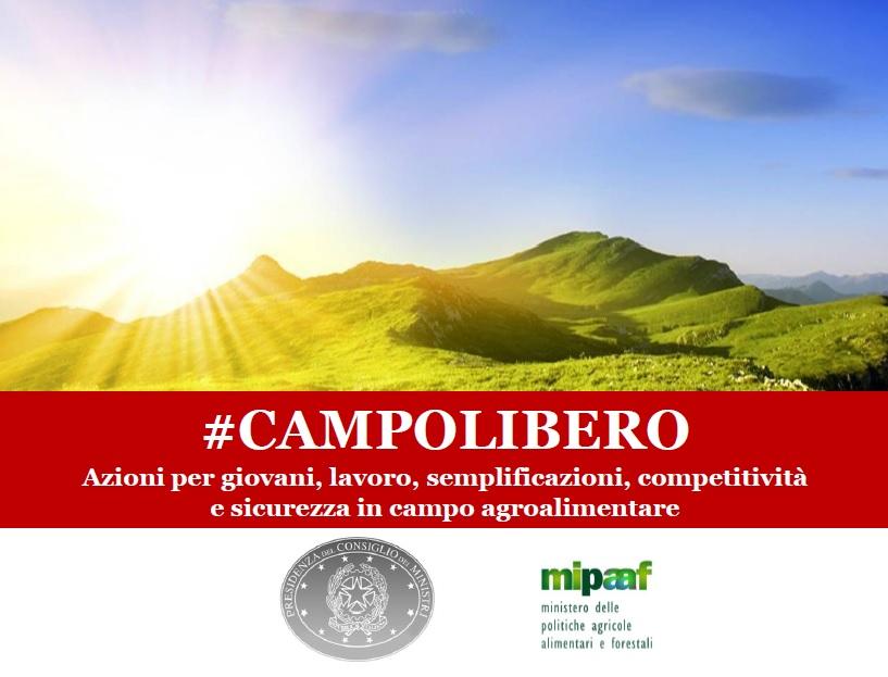 Campolibero